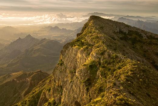 Oasis of Stone: Visions of Baja California
