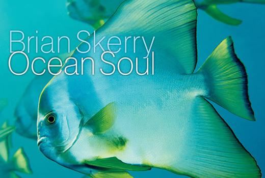 Brain Skerry Ocean Soul