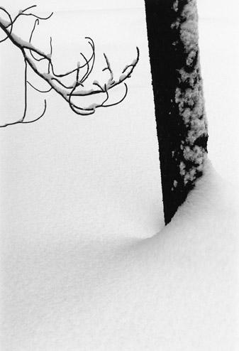 |Visual Haiku, 1977