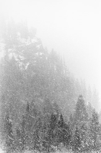 |Hard, Driven Snow, 1979