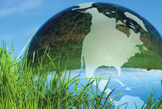 Sustainability: A Systems Approach to a Successful Business Model