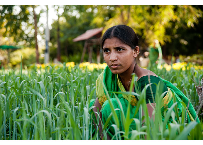 6ag2011_02_India-1660